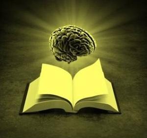 reader-brain